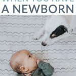 7 THINGS YOU CAN ASK VISITORS TO DO WHEN YOU HAVE A NEWBORN